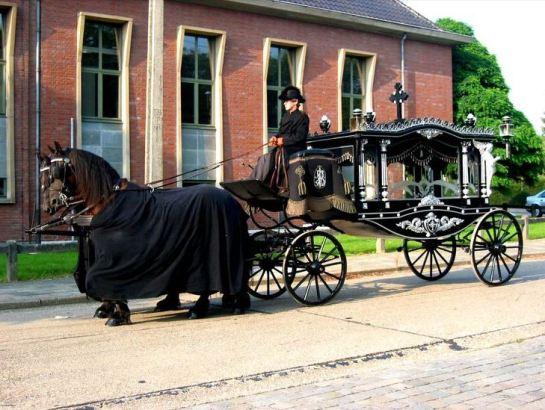 Likvogn i Nederland